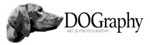 DOGraphy+logo