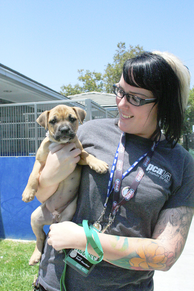 staff member with puppy