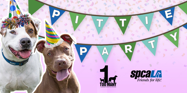 Pittie Party banner with dogs