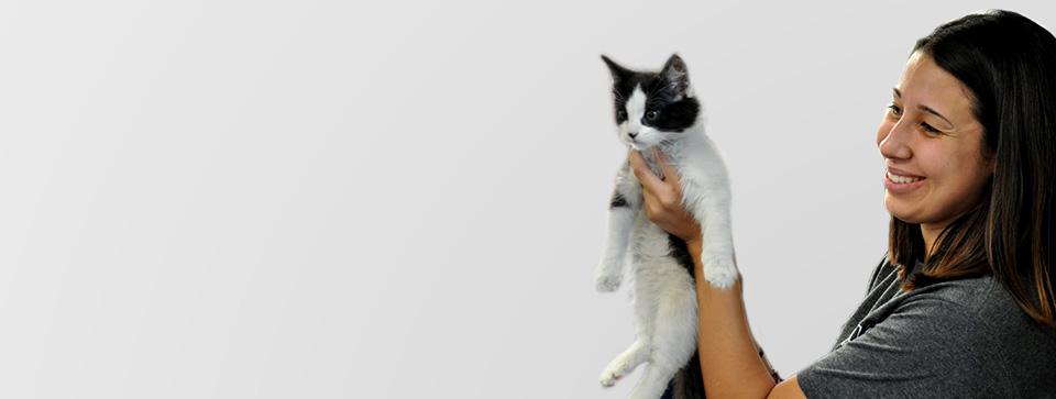 spcaLA Employee Holding Cat