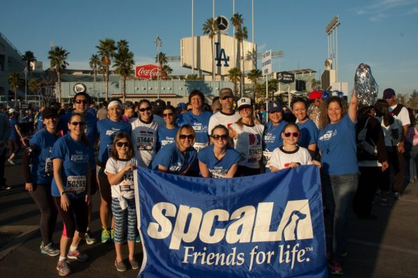 spcaLA team at the LA Marathon and 5K Run in front of Dodger Stadium