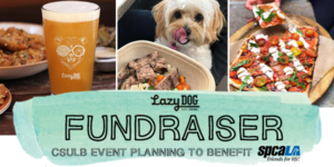 Pint of beer, small white dog licking nose while looking at bowl of food, and vegetarian pizza photos with text 'Lazy Dog Fundraiser. CSULB Event Planning to benefit spcaLA'