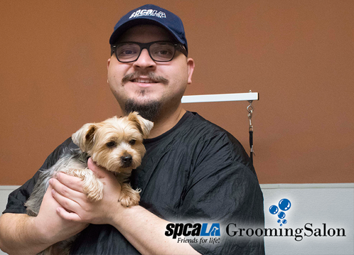 happy client at grooming salon