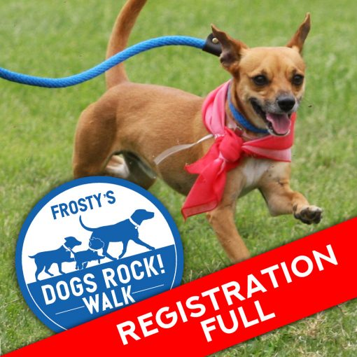 Registration full for dog walk with pic of dog walking