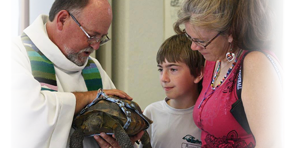 Priest blessing a turtle