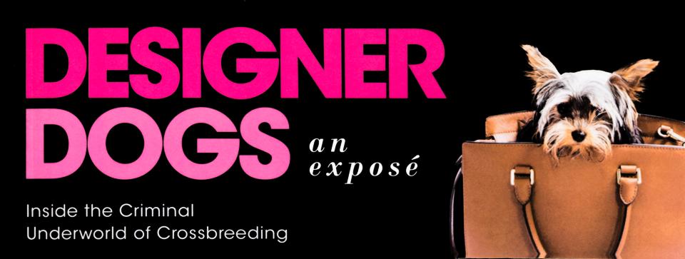 Designer Dogs book cover