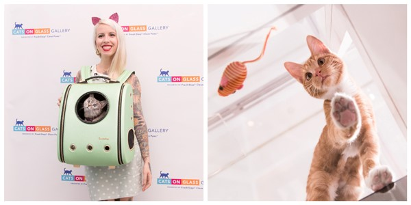 Woman with kitten backpack on and orange kitten playing with toy mouse.