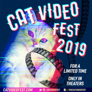 Poster for Cat Video Fest 2019, white kitten against a night sky with a film reel around it.