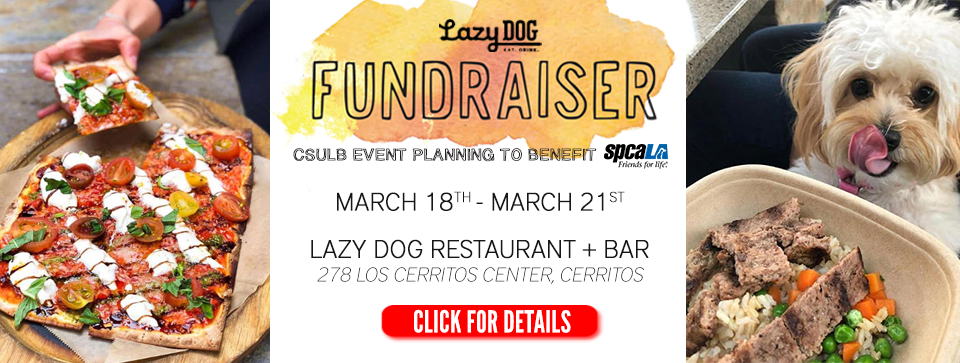 Picture of vegetarian pizza on left, picture of small white dog licking nose while looking at bowl of food on right with text 'Lazy Dog fundraiser. CSULB Event Planning to benefit spcaLA. March 18 - March 21. Lazy Dog Restaurant + Bar 278 Los Cerritos Center, Cerritos' and 'click for details' button