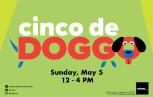cinco de Doggo Sunday, May 5 12 - 4 PM Green and yellow flyer with brown and black dog.