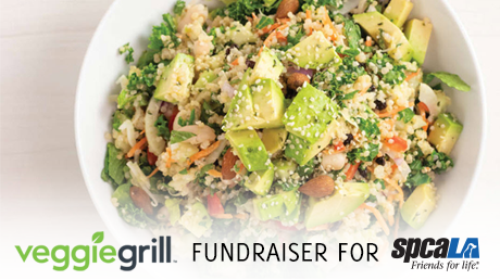Photo of Avocado Cesar salad.Text: Veggie Grill Fundraiser for spcaLA
