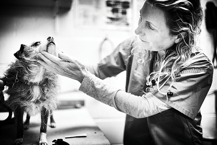 Black and white photo of female veterinarian examining the side of a small dog's face as it stands on an exam table.
