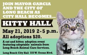Text: Join Mayor Garcia and the city of Long Beach as city hall becomes...Kitty Hall. May 21 2019 2 - 5 pm. This is a kitten and cat adoption event featuring cats from Long Beach Animal Care Services, all adoption $20