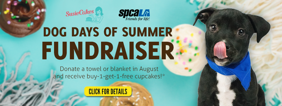 SusieCakes logo. spcaLA logo. Dog Days of Summer Fundraiser. Donate a towel or blanket in August and receive buy-1-get-1-free cupcakes!1 Black puppy licking its nose. Blue background with cupcakes and blankets.