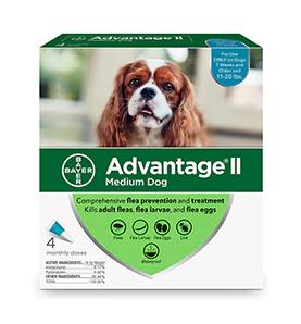 advantage med dog