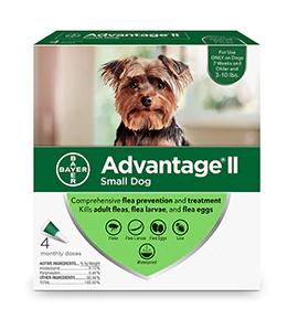 advantage small dog