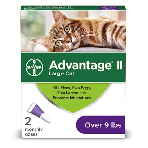 Advantage II for Large Cats 9lbs 2 Pack